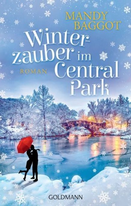 Winterzauber in Central Park